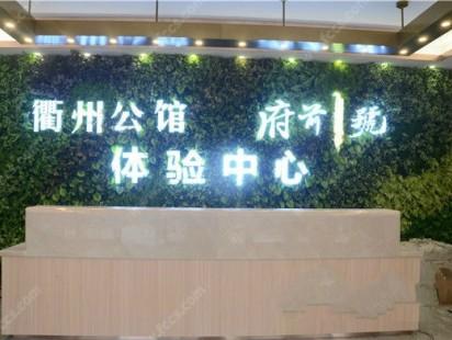 碧桂园德信衢州公馆效果图