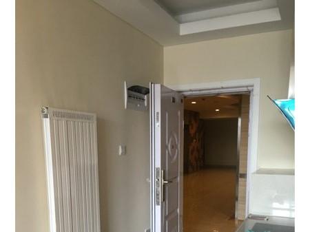 正翔国际精装公寓 整租 1室1厅1卫 49平米(个人)