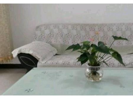 德宏芒市学府时代 单室精装公寓出租