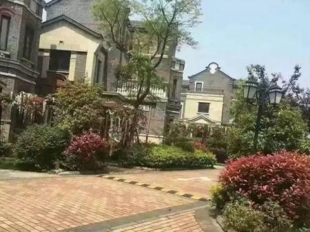 嘉善西塘景区内整套别墅 前后花园 带车库