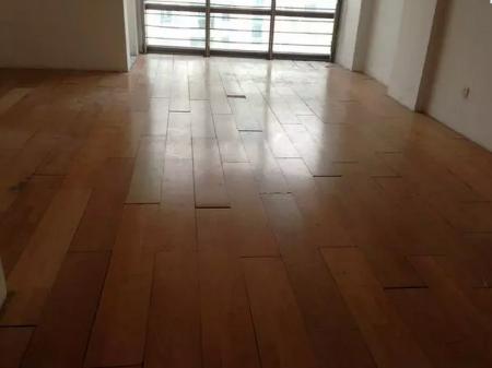 上海华谊星城大厦(杨浦-东外滩) 1室0厅1卫地铁房
