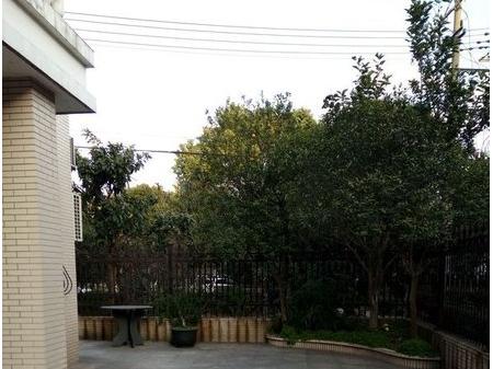 申大苑独栋别墅精装,280㎡,650万,院子大