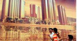 专家:剩女多的城市房价高 靠买房消除不婚恐慌