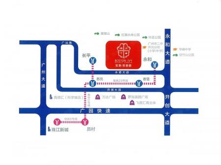 广州实地常春藤交通图