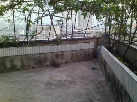 通川区达县宾馆前 3室2厅133坪 附超大花园