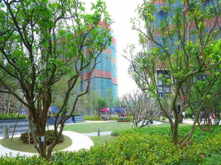 深圳颐安·都会中央2期