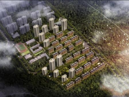 合肥华地·森林语