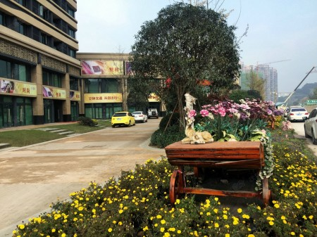 重庆和记黄埔御峰实景图