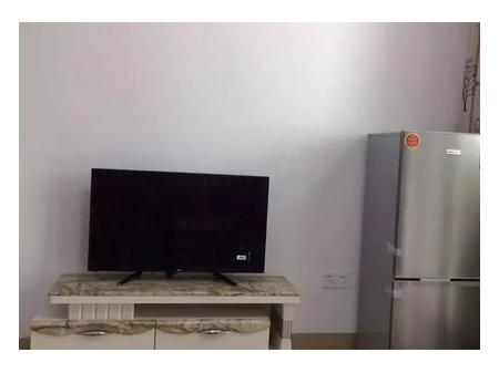 明珠城公寓1室1厅 42平 1150元/月 精装修