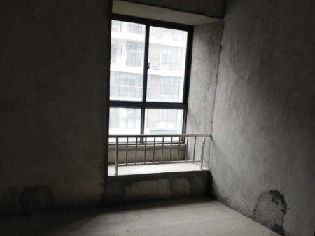 柳州华展华园 3室2厅2卫117㎡ 毛坯房