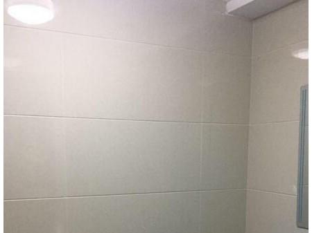 江南国际1室0厅1卫   50 平  中等装修公寓 900元/月