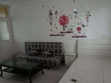 兴乐广场附近 1室1厅 30平米 简单装修 年付年租6500