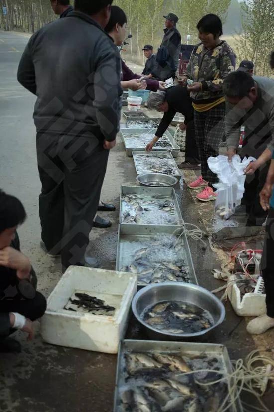 渔业是白洋淀附近村民的主要副业