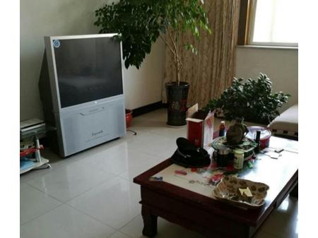 泗阳中央商城 3室2厅2卫140平 家电齐全