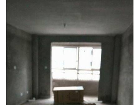 格林春天 2室2厅1卫 102平 新房毛坯
