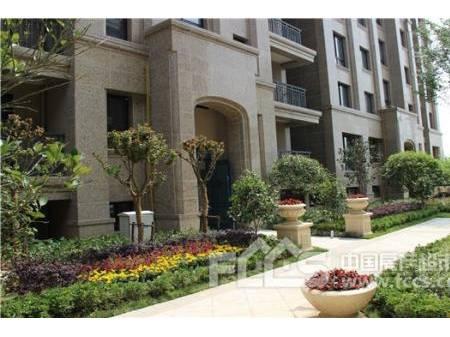 枫丹白露一楼二楼复式 装修超豪华、带院子、左右型双车